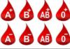 E-Nabız kan grubu